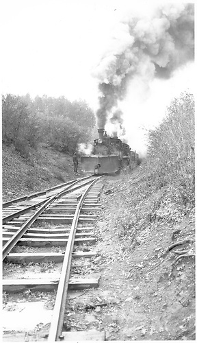 Double-header with stock train near Valley View.<br /> RGS  Valley View, CO  Taken by Richardson, Robert W. - 10/13/1945