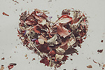 Flower petals in shape of heart. This image conns grain and texture.