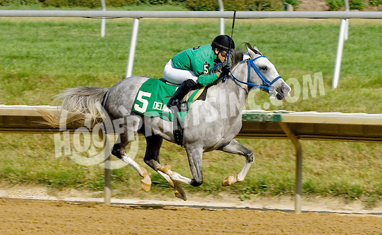Vazs Mane Son winning The Alec Courtelis Juvenile Arabian Stakes at Delaware Park on 7/9/12