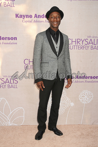 6 June 2015 - Los Angeles, California - Aloe Blacc. 14th Annual Chrysalis Butterfly Ball held at a Private Residence. Photo Credit: Byron Purvis/AdMedia