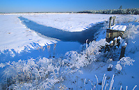 Frozen Cranberry Bog, and winter frost. Chatsworth, New Jersey