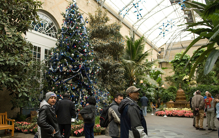The U.S. Botanic Garden's holiday exhibit, 'A Midnight Clear,' opened on November 22 and will remain on display through January 6, 2008.