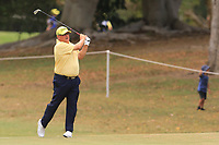 Peter O'Malley (AUS) on the 11th fairway during Round 2 of the Australian PGA Championship at  RACV Royal Pines Resort, Gold Coast, Queensland, Australia. 20/12/2019.<br /> Picture Thos Caffrey / Golffile.ie<br /> <br /> All photo usage must carry mandatory copyright credit (© Golffile | Thos Caffrey)