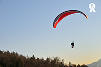 Paraglider in air over forest (Licence this image exclusively with Getty: http://www.gettyimages.com/detail/sb10068346d-001 )