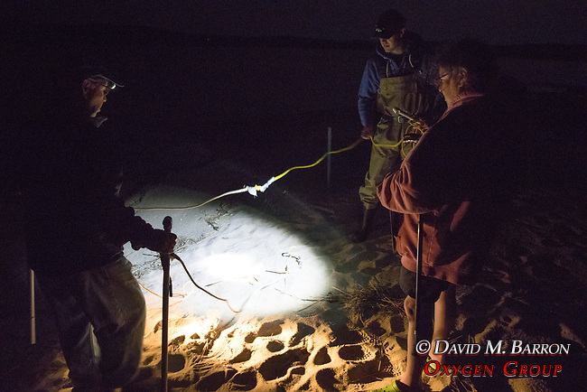 Jerry Hequembourg, Mike Long  & Karen Strauss On Horseshoe Crab Survey
