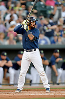 Catcher Ali Sanchez (20) of the Columbia Fireflies bats in a game against  the West Virginia Power on Thursday, May 18, 2017, at Spirit Communications Park in Columbia, South Carolina. Columbia won in 10 innings, 3-2. (Tom Priddy/Four Seam Images)