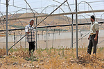 Jasser Dararmeh, right, and Faik Sabih, left, at one of their greenhouses, which are dry due to lack of water, in the village of Farsiya, northern Jordan Valley, West Bank.