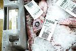 le 4 mai 2017, 100 tonnes de poissons , provenant de la pêche hauturière se déroulant dans les eaux françaises et anglaises, seront vendues à la criée ce matin. le type de poisson, la méthode de pêche, le nom du navire ainsi que le poids de la caisse sont indiqués sur le ticket.