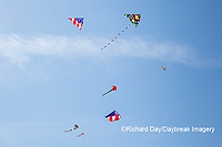 63495-02701 Kites flying at Flagler Beach Flagler Beach, FL