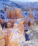 USA, Utah, Bryce Canyon National Park, Winter.   Winter Snow.