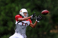 Jul 31, 2009; Flagstaff, AZ, USA; Arizona Cardinals wide receiver Larry Fitzgerald catches a pass in the rain during training camp on the campus of Northern Arizona University. Mandatory Credit: Mark J. Rebilas-