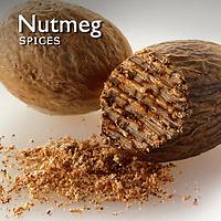 Nutmeg Pictures   Nutmeg Food Photos Images & Fotos