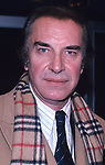 Martin Landau photographed in New York City in 1981.