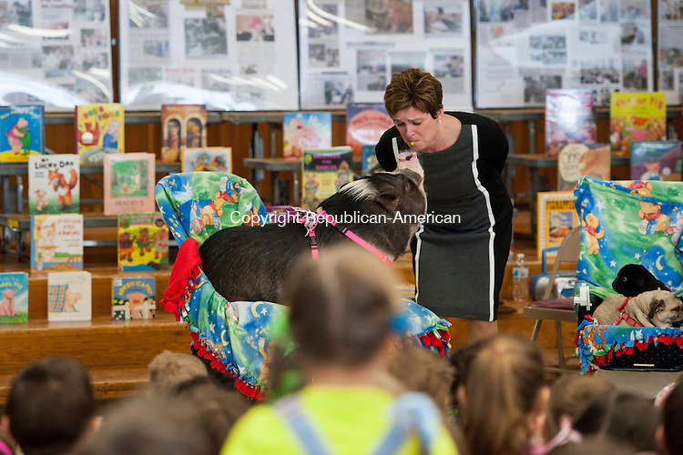 """TORRINGTON, CT-26 February 2015-022615EC01-   Susan Fergusson, the principal at East School in Torrington, makes good on a promise to kiss a pig if the school met reading requirements. Daisy the pig and his owner, Farmer Minor, visited the school Thursday to promote reading. The two travel across the country for their program, """"Pig Out on Reading."""" Erin Covey Republican-American"""
