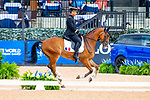 Lt Col Thibaut Vallette riding Qing Du Briot ENE HN. FRA. Eventing Dressage. Day 4. World Equestrian Games. WEG 2018 Tryon. North Carolina. USA. 14/09/2018. ~ MANDATORY Credit Elli Birch/Sportinpictures - NO UNAUTHORISED USE - 07837 394578
