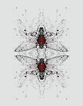 Montage concept of house fly with floral background