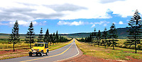 A yellow jeep heads for Manele Bay for a day at the beach