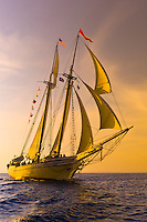 Schooner Heritage sailing into Pulpit harbor, Penobscot Bay, Maine USA