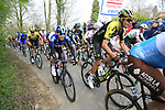 The 2nd group on the road climb Mont Noir during the 2019 Gent-Wevelgem in Flanders Fields running 252km from Deinze to Wevelgem, Belgium. 31st March 2019.<br /> Picture: Eoin Clarke | Cyclefile<br /> <br /> All photos usage must carry mandatory copyright credit (© Cyclefile | Eoin Clarke)