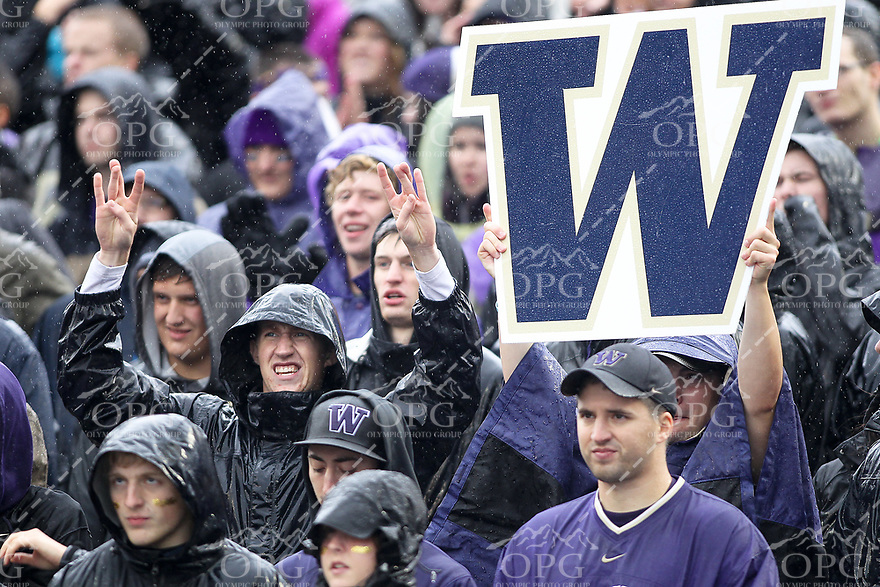 2013-09-28: Washington fans supported there team during the harsh Pacific Northwest rainstorm that rolled into Seattle during the game against Arizona.  Washington won 31-13 over Arizona in Seattle, WA.