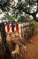 INDIA Tamil Nadu, women keep sheeps for income generation / INDIEN, Frauen halten Schafe um zusaetzliches Einkommen zu erzielen