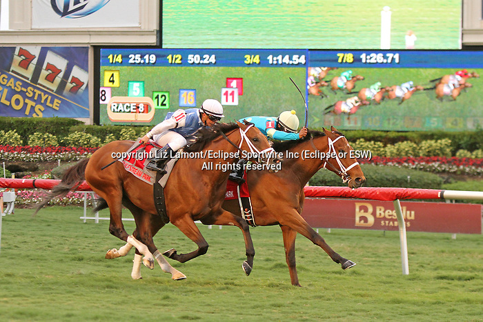 Mr. Online (ON) with jockey Kendrick Carmouche on board  wins the El Prado Stakes by a head over Saito (IRE) at  Gulfstream Park.  Hallandale Beach, Florida 12-28-13