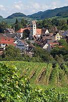 Germany, Baden-Wuerttemberg, Markgraefler Land, wine village Britzingen with St. John church
