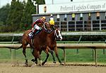 June 22, 2019 : Mia Mischief (#10, Ricardo Santana Jr.) wins the Roxelana Stakes at Churchill Downs, Louisville, Kentucky over Covfefe (#2, Shaun Bridgmohan). Trainer Steven M. Asmussen, Owners L. William and Corinne Heiligbrot, Heider Family Stables LLC (Scott Heider), and Madaket Stables LLC (Sol Kumin and Jason Monteleone). By Into Mischief x Greer Lynn, by Speightstown. Mary M. Meek/ESW/CSM