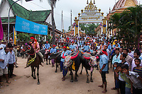 Oct. 15, 2012 - Vihear Sour, Cambodia. Racers wait to leave the starting line during the annual Pchum Ben buffalo races. © Nicolas Axelrod / Ruom