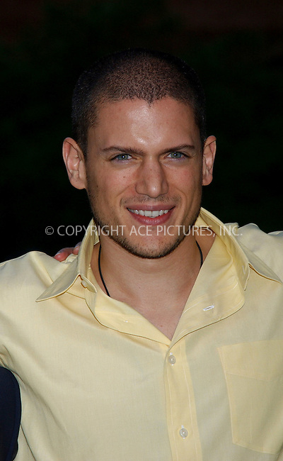 WWW.ACEPIXS.COM . . . . . ....NEW YORK, MAY 18, 2006....Wentworth Miller at the FOX Broadcasting Company Upfront.....Please byline: KRISTIN CALLAHAN - ACEPIXS.COM.. . . . . . ..Ace Pictures, Inc:  ..(212) 243-8787 or (646) 679 0430..e-mail: picturedesk@acepixs.com..web: http://www.acepixs.com