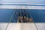 Metroploitan Building downtown Seattle abstract views of building and glass windows with  tree reflections