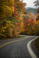 Fall in the Ozark National Forest in Arkansas on state hwy 123.