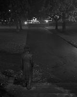 Princes Park -Steps & Statue<br /> Launceston<br /> 2009