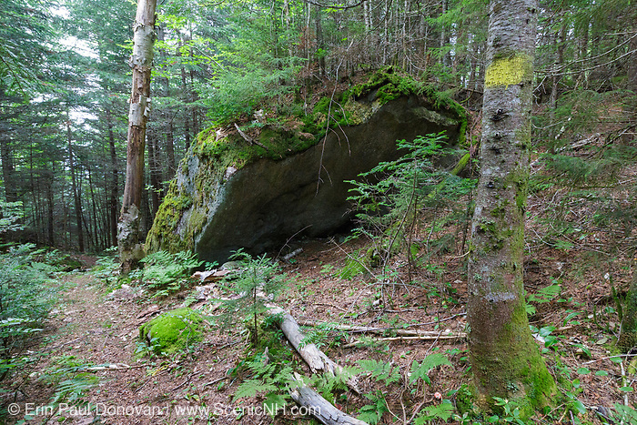 Shelter rock along the old Osseo Trail in Lincoln, New Hampshire. Cut in the early 1900s, this portion of the Osseo Trail began near the East Branch & Lincoln Railroad's logging Camp 3. It traveled up through the Clear Brook drainage to Osseo Peak and Mount Flume. During the early years of the trail, it was part of the Franconia Ridge Trail. In the 1980s when the Clearbrook Condominium development was built this portion of the Osseo Trail was abandoned and rerouted to its current location.
