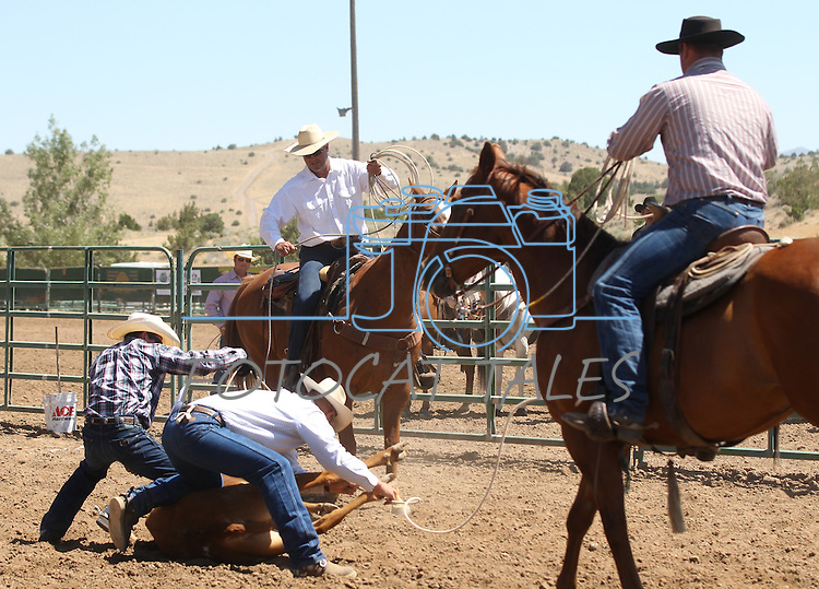 The Hone NIX team competes in the branding event at the Minden Ranch Rodeo on Sunday, July 24, 2011, in Gardnerville, Nev. .Photo by Cathleen Allison