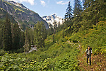 Hiking, Hiker, Little Beaver trail, Mount Whatcom, Picket Range, North Cascades National Park, wilderness, Cascade Mountains, Washington State, Pacific Northwest, United States, Scott McCredie, released,.