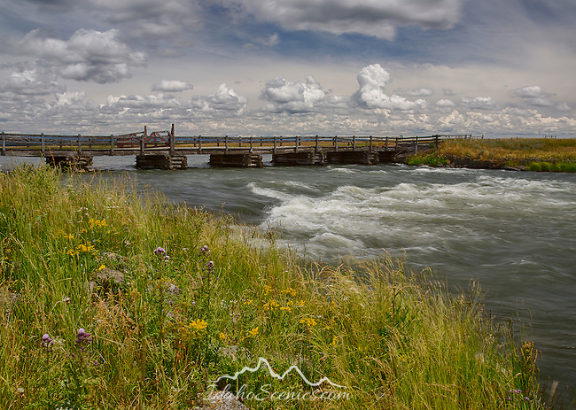 Idaho, Eastern, Island Park. The Railroad Ranch Bridge over the Henry's Fork of the Snake River in summer.