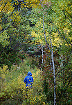 October 2009:  A solitary hiker along a trail in the Maroon Bells Wilderness, Aspen, Colorado.
