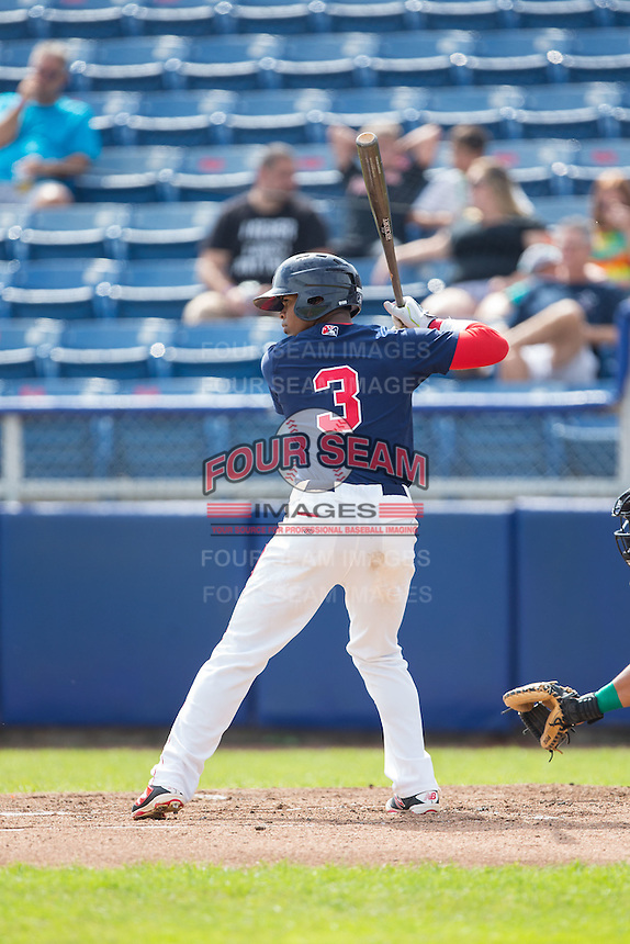 Joseph Monge (3) of the Salem Red Sox at bat against the Lynchburg Hillcats at LewisGale Field at Salem Memorial Baseball Stadium on August 7, 2016 in Salem, Virginia.  The Red Sox defeated the Hillcats 11-2.  (Brian Westerholt/Four Seam Images)
