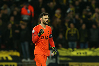 Hugo Lloris of Tottenham Hotspur celebrates the victory after Tottenham Hotspur vs Borussia Dortmund, UEFA Champions League Football at Wembley Stadium on 13th February 2019