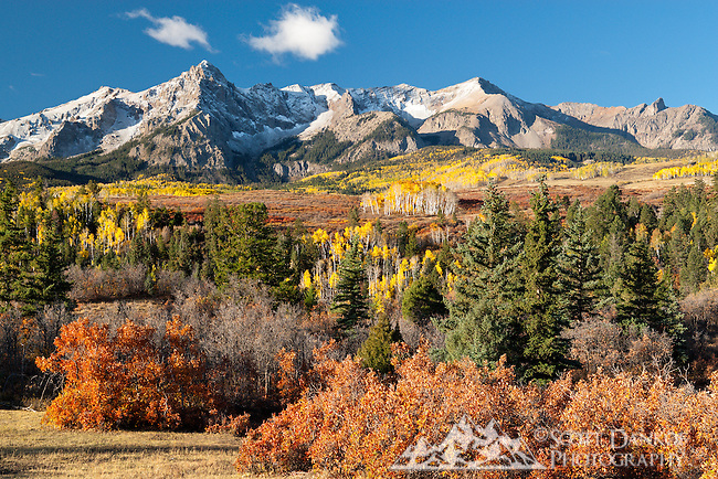 Early morning fall colors near Ridgway, Colorado.