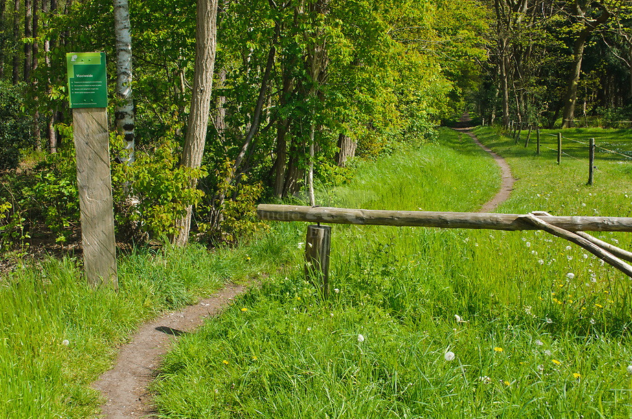 Wandelpad in de Vloeiweide, Brabants Landschap