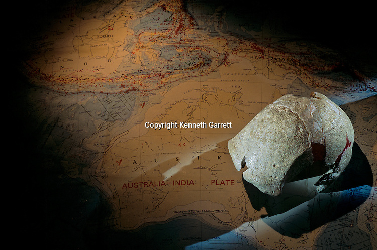 Homo Erectus, Willandra Lakes skull, 20,000 years old, Australia.