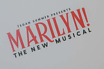 Paris Marilyn The New Musical