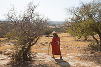 Morocco - Tidzi - Nina Amchine, 52, from Idmine, founder of Ajddigue cooperative walks on the Argan forest. Born in 1997 out of the initiative of 17 women, Ajddigue is one of the oldest cooperatives in the area. Since its creation, Ajddigue has benefited more than 100 local women by employing them in the argan oil extraction and enrolling them in alphabetisation courses.