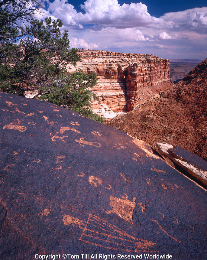 Anasazi Petroglyphs, San Juan River, Glen Canyon National Recreation Area, Utah