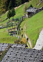 Italien, Suedtirol, Alto Adige-Trentino, bei Meran, im Ultental, das parallel zum Vinschgau verlaeuft und bei Lana im Meraner Becken beginnt, Weisbrunn: Bergdorf am Ende des Tals   Italy, Alto Adige-Trentino, South Tyrol, near Merano, Val d'Ultimo, Fontana Bianca: mountain village