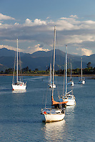 New Zealand, South Island, Nelson region, Mapua: Yachts anchored in estuary of Tasman Bay by Rabbit Island | Neuseeland, Suedinsel, Region Nelson, Mapua: Tasman Bay bei Rabbit Island an der Nordseite der Suedinsel