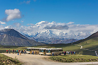 Tour buses at Stoney Dome overlook on the Park road in Denali National Park, Alaska.