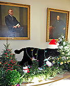 Life-size replica of the First Family's Portuguese Water Dog, Bo, under portraits of United States Presidents Calvin Coolidge, left, and Grover Cleveland, right, in the Booksellers, that is part of the 2012 White House Christmas decorations in Washington, DC on Wednesday, November 28, 2012.  It is constructed of 18,000 one-inch black pom-pons and 2,000 white pom-poms.  It took a single volunteer approximately 85 hours to complete..Credit: Ron Sachs / CNP